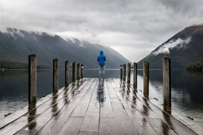 A Person on a Wooden Dock