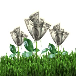 Cash against your advance is in full bloom!