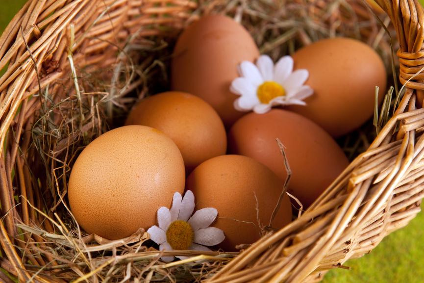 Куриные-яйца