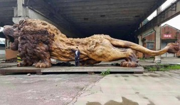 carved-wooden-giant-lion-sculpture-9-5914087fde5bc__700