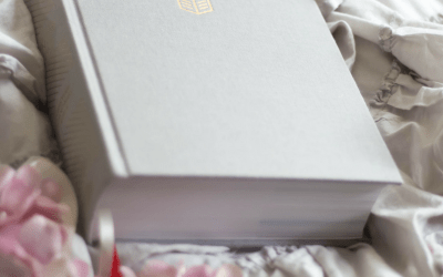 Is the She Reads Truth Bible a Good Fit for You? An Honest Review