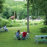 Dinosaur Park at Natures Art Center