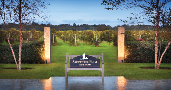 Saltwater Farm Vineyard Sign