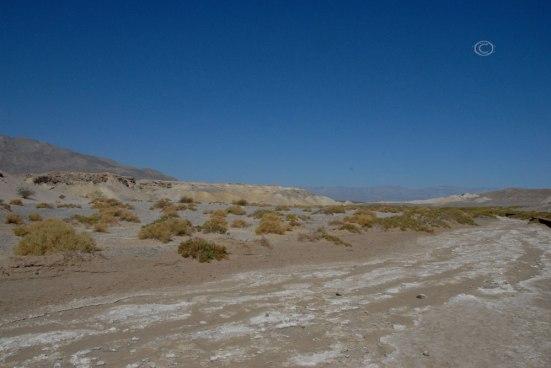 Salt Creek Bed