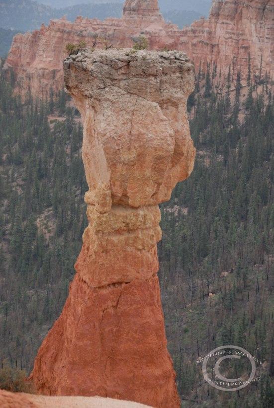 Agua Canyon, Bryce Canyon