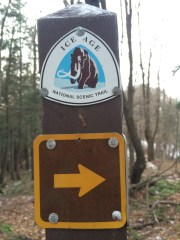 I don't even know how many miles of this trail I have hiked.