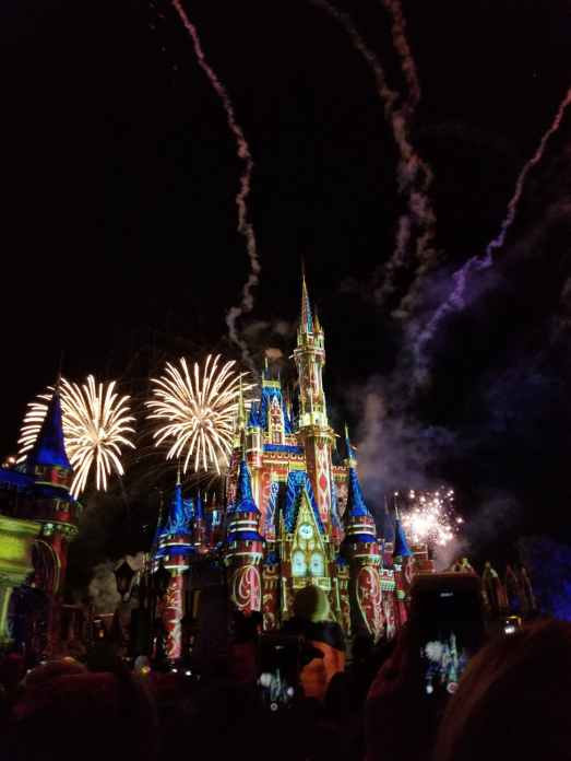 Disney world is where nerds can be free of fear