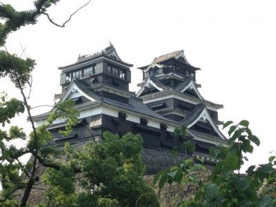 熊本地震の避難時にペットのトラブル・問題が発生