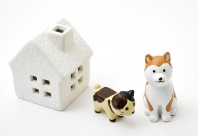 災害対策ガイドラインの記述は犬や猫が中心
