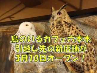 20180306_inko_eyecatch