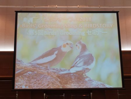 第5回Birds' Groomingセミナーのパワーポイント