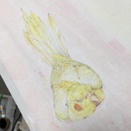 染織家の安武愛優女さんのオカメインコ「お尻ぴーん」無線友禅のタペストリー