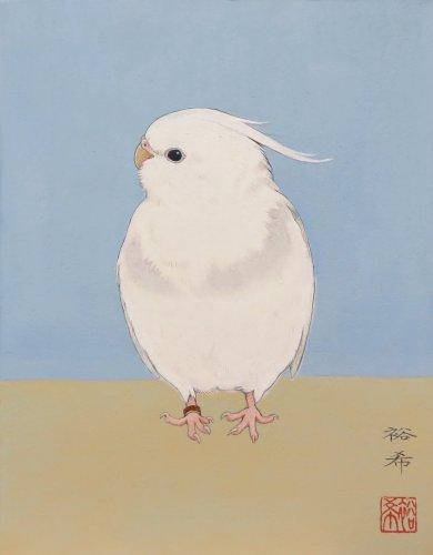 新保裕希さんが描いたオカメインコ・ホワイトフェイスの日本画「月白」