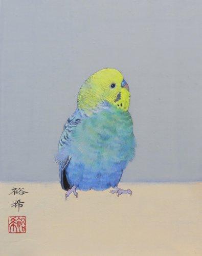 新保裕希さんが描いたセキセイインコの日本画「彩う」