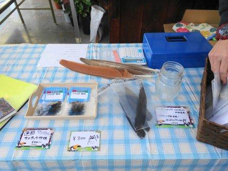 掛川花鳥園のバードスタッフさんの出展は、掛川花鳥園の鳥の羽やタマゴを販売
