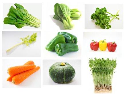 インコ飼育本の記述から抽出した食べられる野菜まとめ