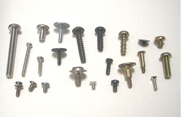 ネジなどの小さな金属部品をインコが誤って飲み込み、体調不良になることも