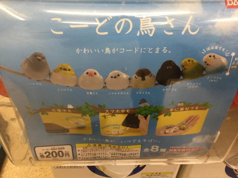 鳥ガチャ「こーどの鳥さん」のパッケージ写真