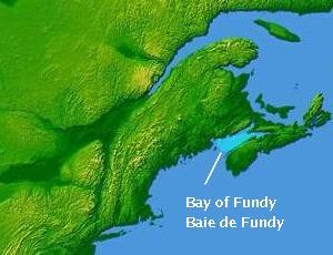 ダーウィンが来たの取材場所となるフェンディ湾の地理を表した地図