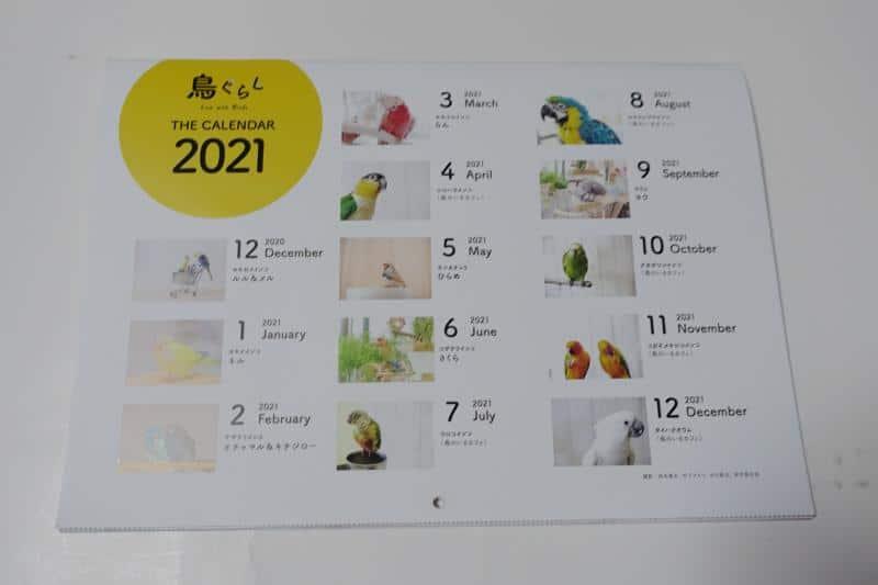 鳥ぐらしの2021年のカレンダーは毎月異なるインコ・オウム・キンカチョウが登場