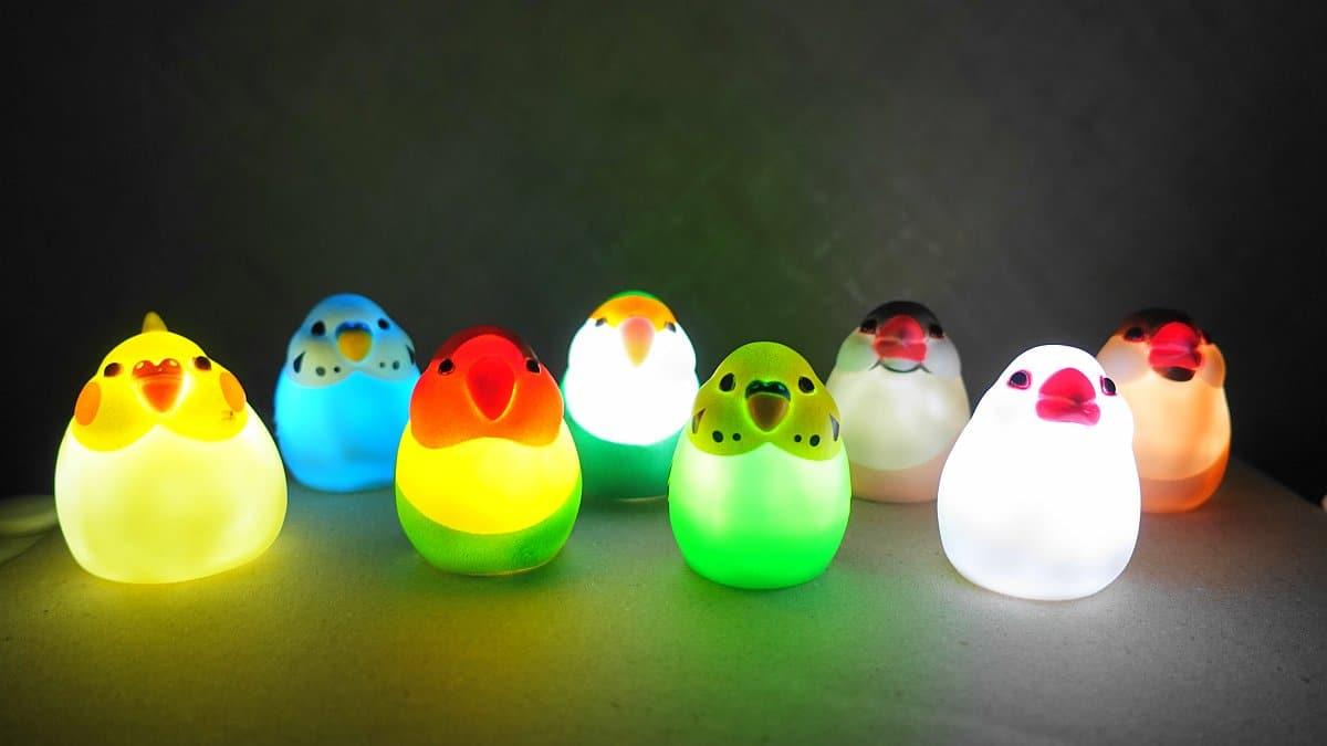 まんまるかわいい小鳥ライトのオカメインコ、セキセイインコ、コザクラインコ、ボタンインコ、文鳥の全8種類を並べて、LEDライトをオンにして暗闇で光らせた様子