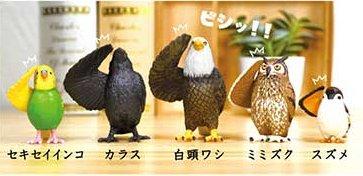2021年5月発売の鳥ガチャ「敬礼鳥」のラインナップは全部で5種類。セキセイインコ、カラス、ハクトウワシ、ミミズク(フクロウ)、スズメ