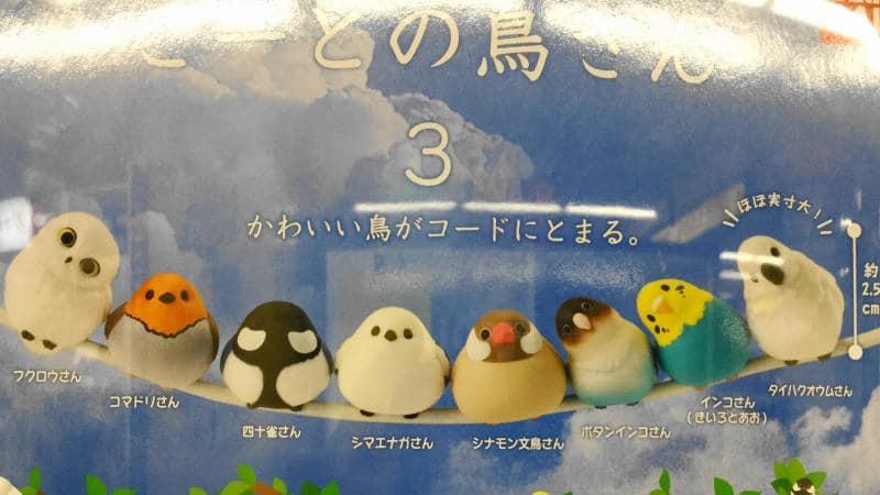 こーどの鳥さん3は全8種類のラインナップ。ボタンインコやタイハクオウムが新登場