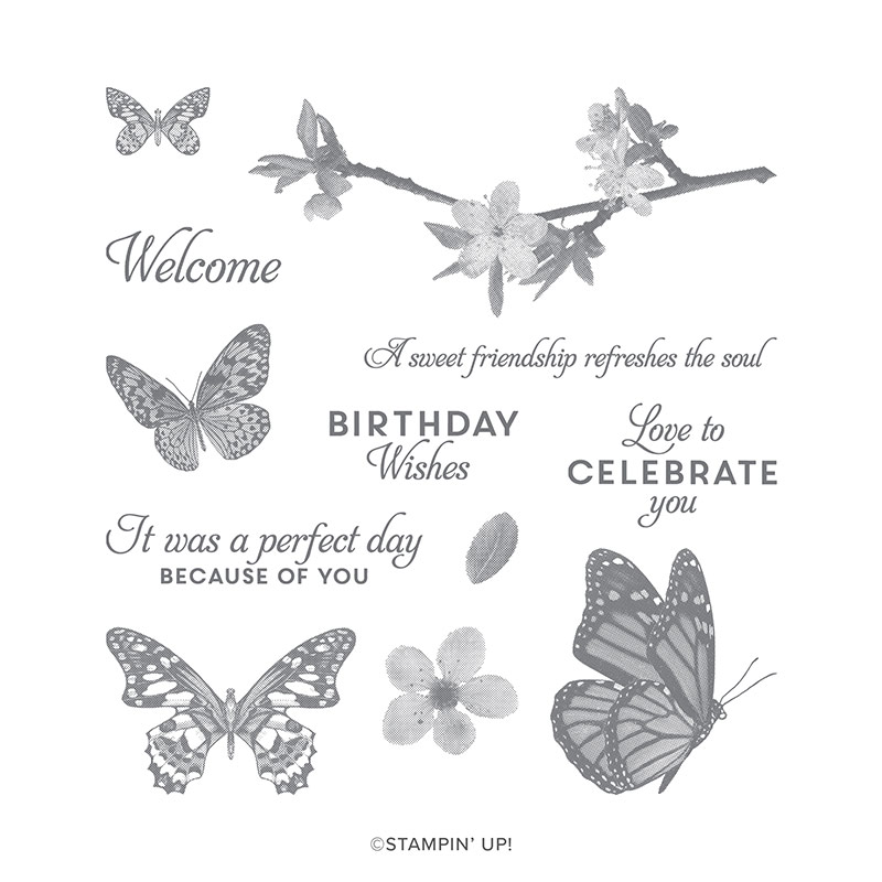 Butterfly Wishes Cling Mount Stamp Set
