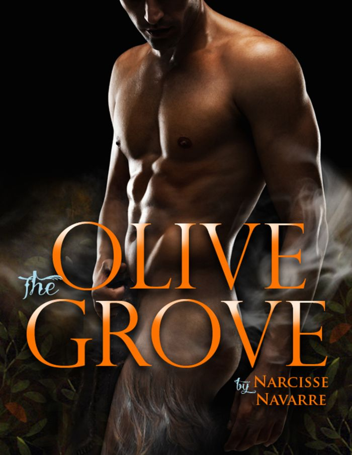 The-Olive-Grove-0