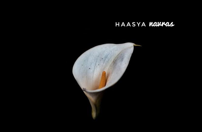 Navras Series - Haasya by Kaaya Faye