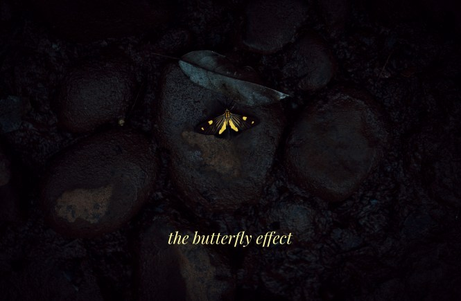 The Butterfly Effect by Kaaya Faye