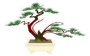 bonsai cartoon