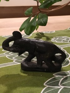 elephant at home