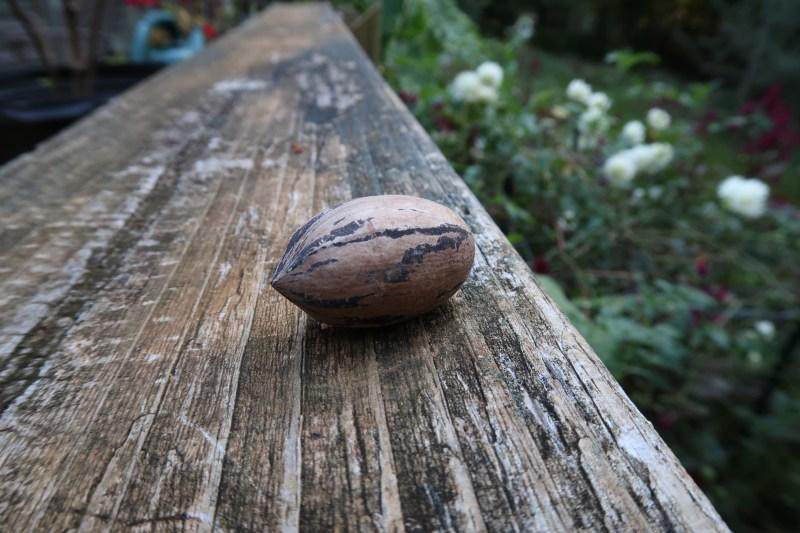 nut on railing