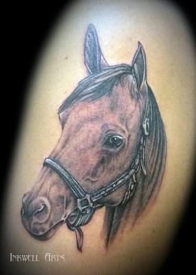 Horse head 300