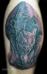 rhino 300