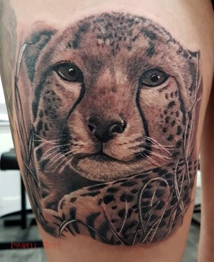 rachel cheetah
