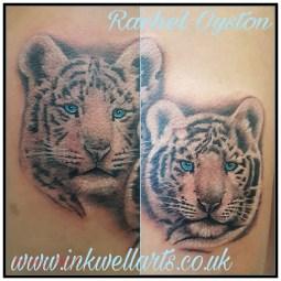 RACHEL white tigers