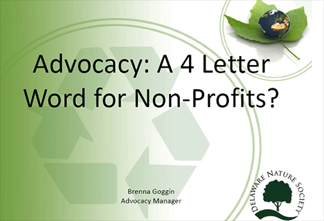 Advocacy: A 4 Letter Word for Non-Profits?