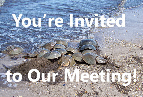 You're Invited to Our Meeting!