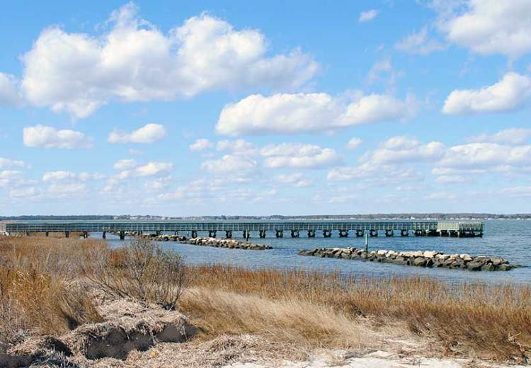 Friends of Holts Landing State Park – June Update