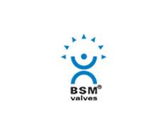 BSM (1)