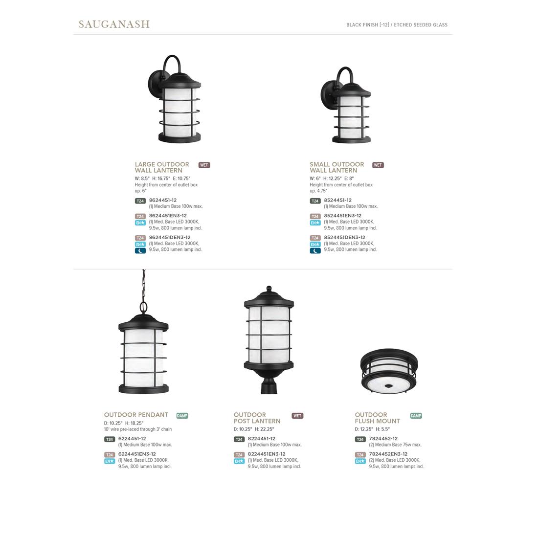 Sea Gull Lighting Sauganash Black 2 Light Outdoor Flush Mount With Led Bulbs En3 12