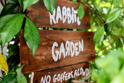 How Make Above Ground Garden