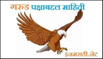 eagle-information-in-marathi