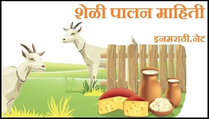 goat-farm-information-in-marathi