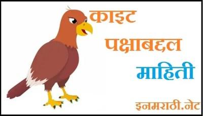 kite bird information in marathi