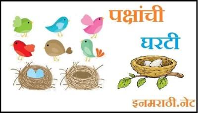 birds and their nest information in marathi
