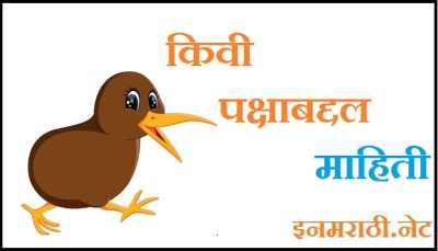 kiwi bird information in marathi language