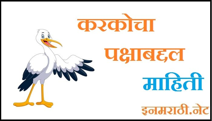 white stork bird information in marathi